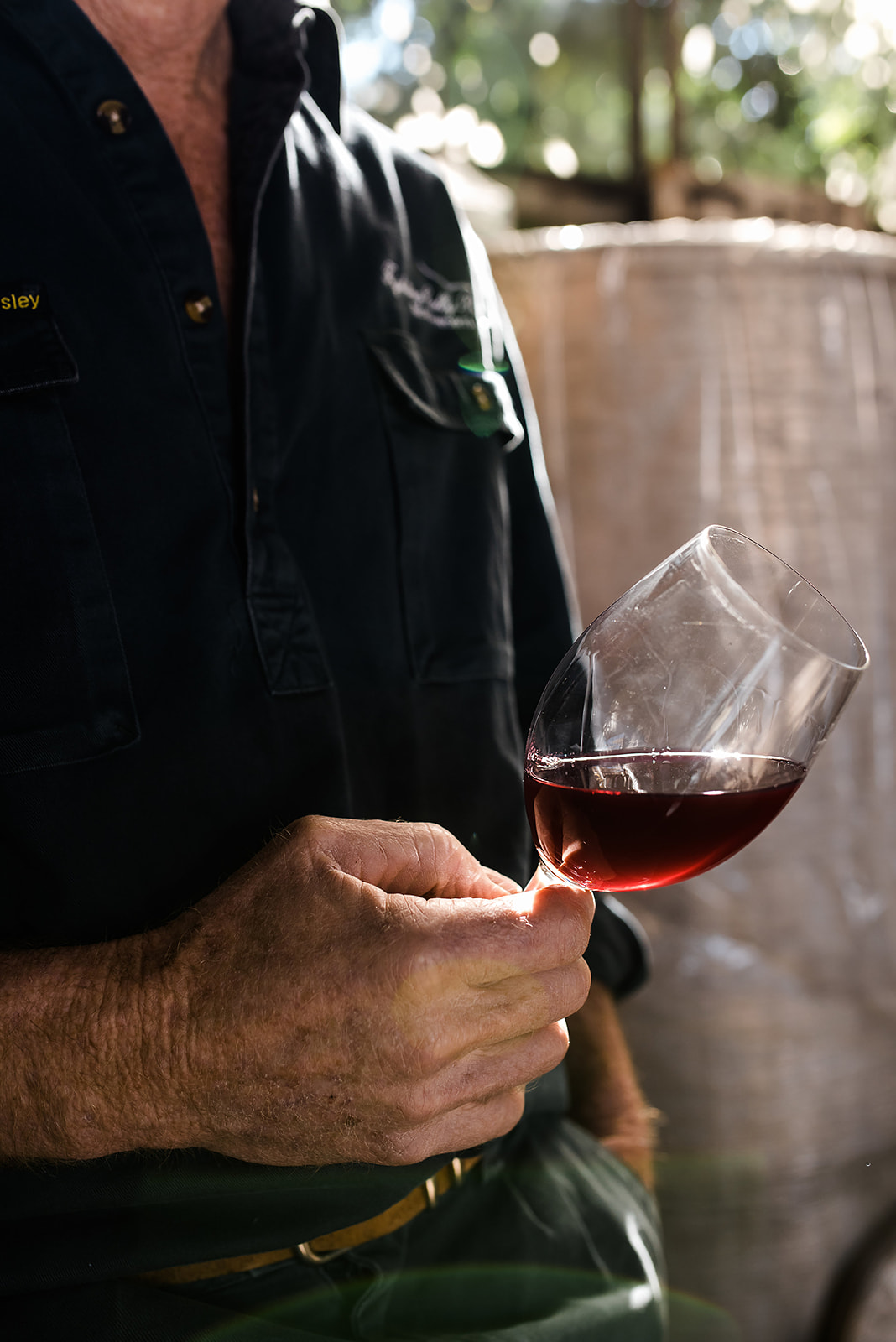 A Sangiovese Story